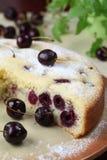 Black cherry sponge cake Stock Photography