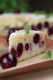 Black cherry sponge cake Stock Photography