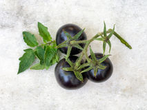 Black cherry tomatoes on pale marble background. Stock Photos