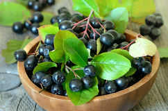 Black chokeberry in brown bowl Stock Photos