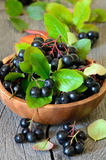 Black chokeberry in brown bowl Royalty Free Stock Photos