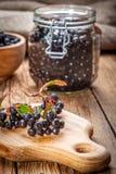 Black chokeberry. Royalty Free Stock Photography