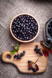 Black chokeberry. Royalty Free Stock Photo