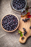 Black chokeberry. Stock Photos