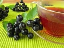 Black chokeberry tea Royalty Free Stock Images