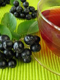 Black chokeberry tea Royalty Free Stock Images