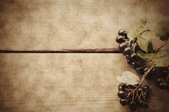 Black chokeberry on wooden background Stock Photos