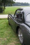 Black classic car. Side of a black classic car outside in meadow royalty free stock images