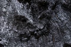 Black Coal Like Burned Wooden Surface Royalty Free Stock Images