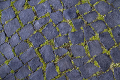 Black cobblestone road covered with moss Stock Photo