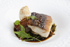 Cod fish dinner Royalty Free Stock Photo