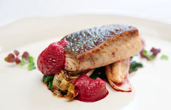 Black cod fillet witt chicory and beetroot juice froth Stock Photos