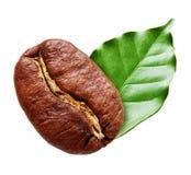 Black coffee bean isolated Stock Photo