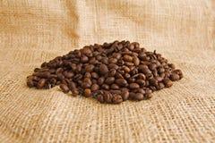 Black coffee beans Stock Image