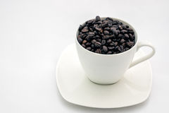 Black coffee beans in white cup. royalty free stock photo