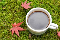 Black coffee. A cup of coffee in the garden during Autumn Stock Photography