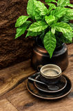 Black coffee and fresh coffee plant on wooden table Stock Photos