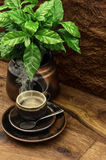 Black coffee and fresh plant on wooden table Royalty Free Stock Photo