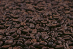 Black coffee grains Royalty Free Stock Image