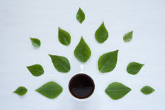 Black coffee and green leaves on white background Royalty Free Stock Photos