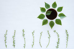 Black coffee and green leaves on white background Stock Photography