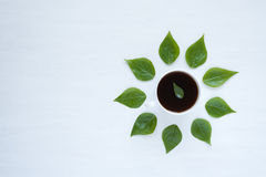 Black coffee and green leaves on white background Royalty Free Stock Photo