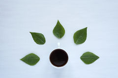 Black coffee and green leaves on white background Royalty Free Stock Photography