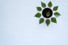 Black coffee and green leaves on white background Royalty Free Stock Image