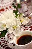 Black coffee and white flowers Stock Photography