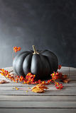 Black colored pumpkin with berries and leaves Royalty Free Stock Photo