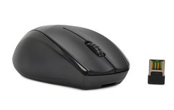 Black computer mouse Stock Image