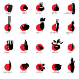 Black contours vegetables. The characters of vegetables and their names. Stock Image