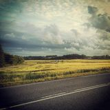 Black country road with yellow field in the background. Imminent summer rain in the countryside Stock Photos