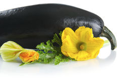 Black courgette with flowers on white with leaf Royalty Free Stock Images