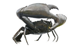 Black crab Stock Photo