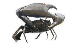 Free Black Crab Stock Photo - 16042670