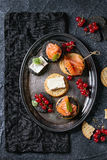 Black crackers with salmon and berries Royalty Free Stock Photo