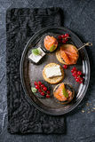 Black crackers with salmon and berries Stock Photos