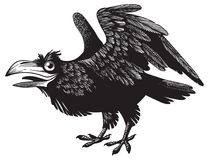 Black crazy cartoon raven character design. Black crazy cartoon raven. Isolated, no background. Engraving style. Monochrome black lit Stock Photo