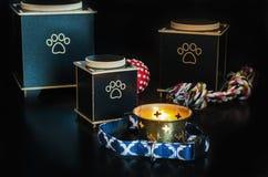Black Cremation urn for pets. Cremation urn for pets. black background royalty free stock image