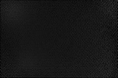 Black Crocodile Skin Texture Stock Image