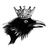 Crow queen. Black crow bird in a crown. Black and white ink illustration Stock Images