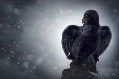 Black crow on a gravestone. Black crow sitting on a gravestone royalty free stock image
