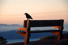 Black Crow's View Stock Photos