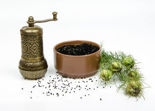 Black cumin. Cumin and mill on white background Royalty Free Stock Photography