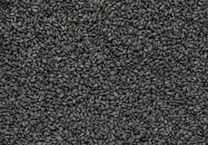 Black Cumin Nigella Sativa or Kalonji Seeds Background Surface Stock Photo