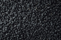 Black cumin Royalty Free Stock Images