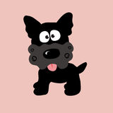Black Curly Yorkie. An illustration of a cute black yorkie Royalty Free Stock Photo