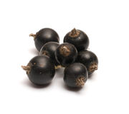 Black Currant. Royalty Free Stock Photo