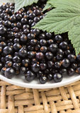 Black currant. Ripe berries and green leaves Stock Photos